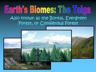 Earth's Biomes: The Taiga