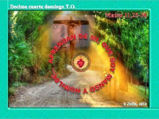Mateo 11,25-30