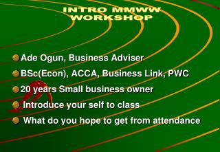 Ade Ogun, Business Adviser BSc(Econ), ACCA, Business Link, PWC 20 years Small business owner