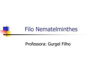 Filo Nematelminthes