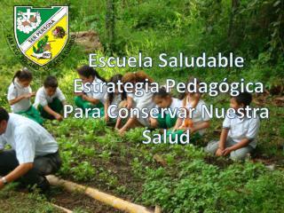 Escuela Saludable  Estrategia Pedagógica Para Conservar Nuestra Salud