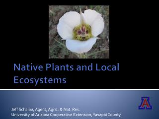 Native Plants and Local Ecosystems