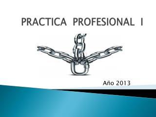 PRACTICA  PROFESIONAL  I