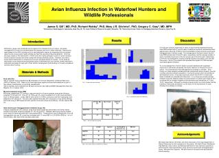 Avian Influenza Infection in Waterfowl Hunters and Wildlife Professionals