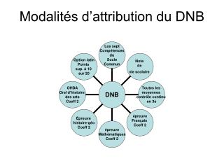 Modalités d'attribution du DNB