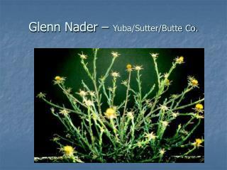 Glenn Nader –  Yuba/Sutter/Butte Co.