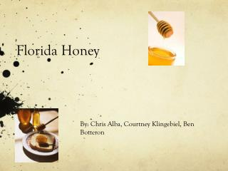 Florida Honey