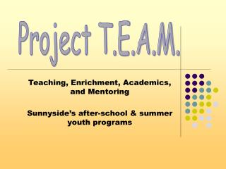 Teaching, Enrichment, Academics, and Mentoring Sunnyside's after-school & summer youth programs