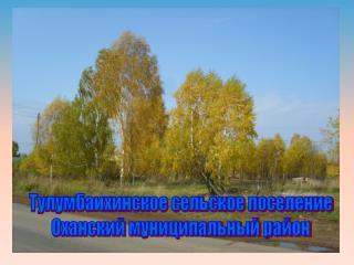 Тулумбаихинское сельское поселение Оханский муниципальный район