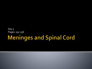 Meninges  and Spinal Cord