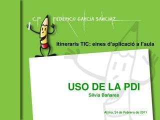 USO DE LA PDI Silvia Bañares