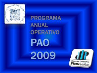 PROGRAMA  ANUAL  OPERATIVO  PAO  2009