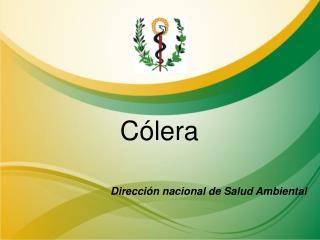 Cólera Dirección nacional de Salud Ambiental