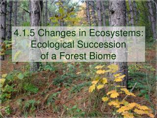 4.1.5 Changes in Ecosystems: Ecological Succession of a Forest Biome