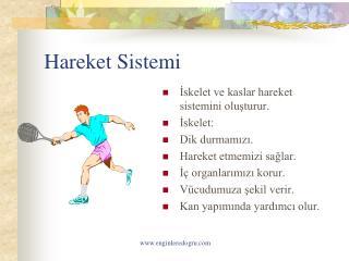 Hareket Sistemi