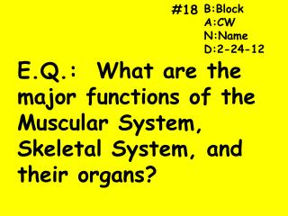 E.Q.:  What are the major functions of the Muscular System, Skeletal System, and their organs?