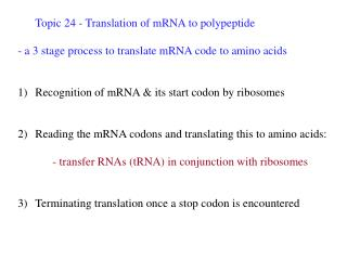 Topic 24 - Translation of mRNA to polypeptide