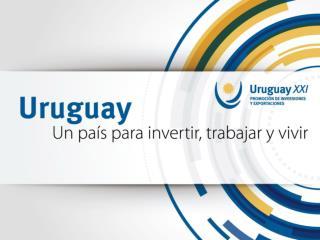 URUGUAYXXI Presentación Uruguay 2013