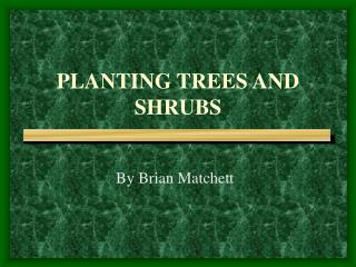 PLANTING TREES AND SHRUBS