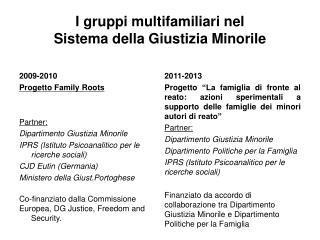 I gruppi multifamiliari nel  Sistema della Giustizia Minorile