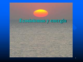 Ecosistemas y energia