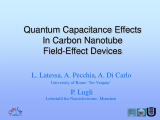 Quantum Capacitance Effects  In Carbon Nanotube  Field-Effect Devices