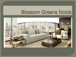 Blossom Greens Noida