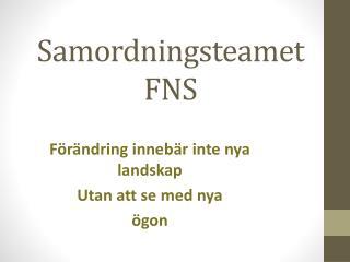 Samordningsteamet FNS