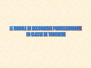 LE MODULE DE DECOUVERTE PROFESSIONNELLE  EN CLASSE DE TROISIEME