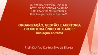 ORGANIZAÇÃO, GESTÃO E AUDITORIA DO  SISTEMA ÚNICO DE  SAÚDE: iniciação ao tema
