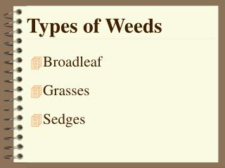 Types of Weeds
