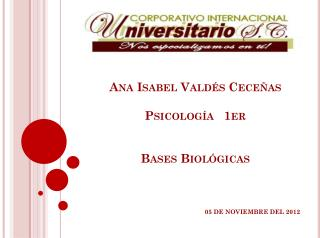 Ana Isabel Valdés Ceceñas Psicología   1er  Bases Biológicas