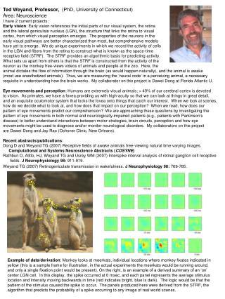 Ted Weyand, Professor,   (PhD, University of Connecticut) Area: Neuroscience