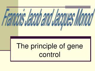 The principle of gene control