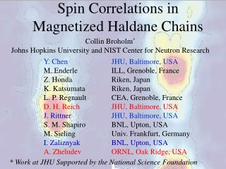 Spin Correlations in  Magnetized Haldane Chains