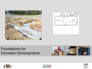 Foundations for  Domestic Developments