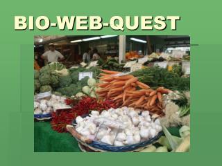 BIO-WEB-QUEST