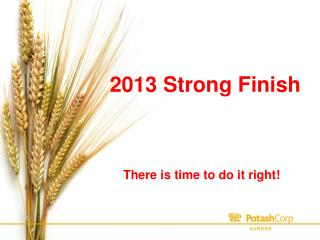 2013 Strong Finish