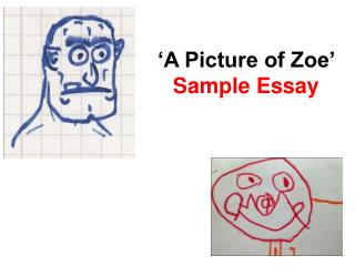 'A Picture of Zoe'  Sample Essay