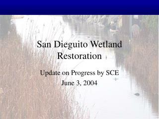 San Dieguito Wetland Restoration