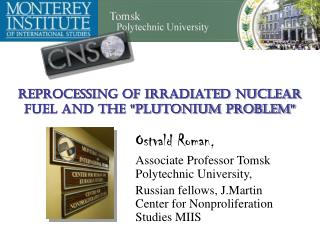 """Reprocessing of Irradiated Nuclear Fuel and the """"Plutonium Problem"""""""