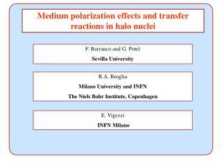 R.A. Broglia Milano University and INFN The Niels Bohr Institute, Copenhagen