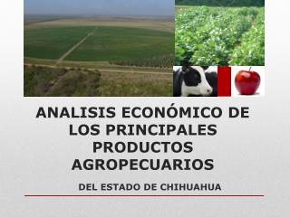 ANALISIS ECONÓMICO DE LOS PRINCIPALES PRODUCTOS AGROPECUARIOS