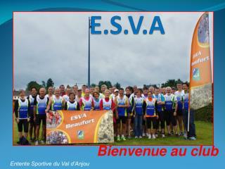 E.S.V.A