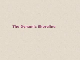 The Dynamic Shoreline