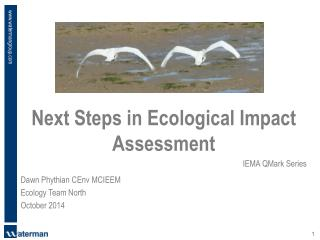 Next Steps in Ecological Impact Assessment