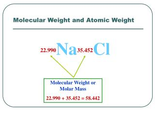 Molecular Weight and Atomic Weight