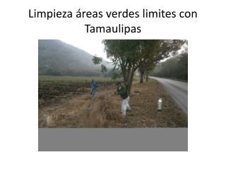 Limpieza áreas verdes limites con Tamaulipas