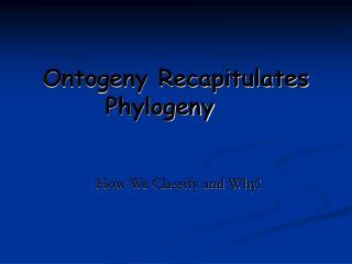 Ontogeny Recapitulates Phylogeny