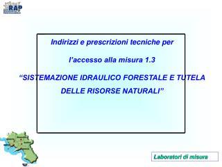 Indirizzi e prescrizioni tecniche per  l'accesso alla misura 1.3
